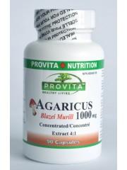 PROVITA - Agaricus Blazei Murill - cancer, colesterol, imunitate, longevitate 1000 mg/90 cps